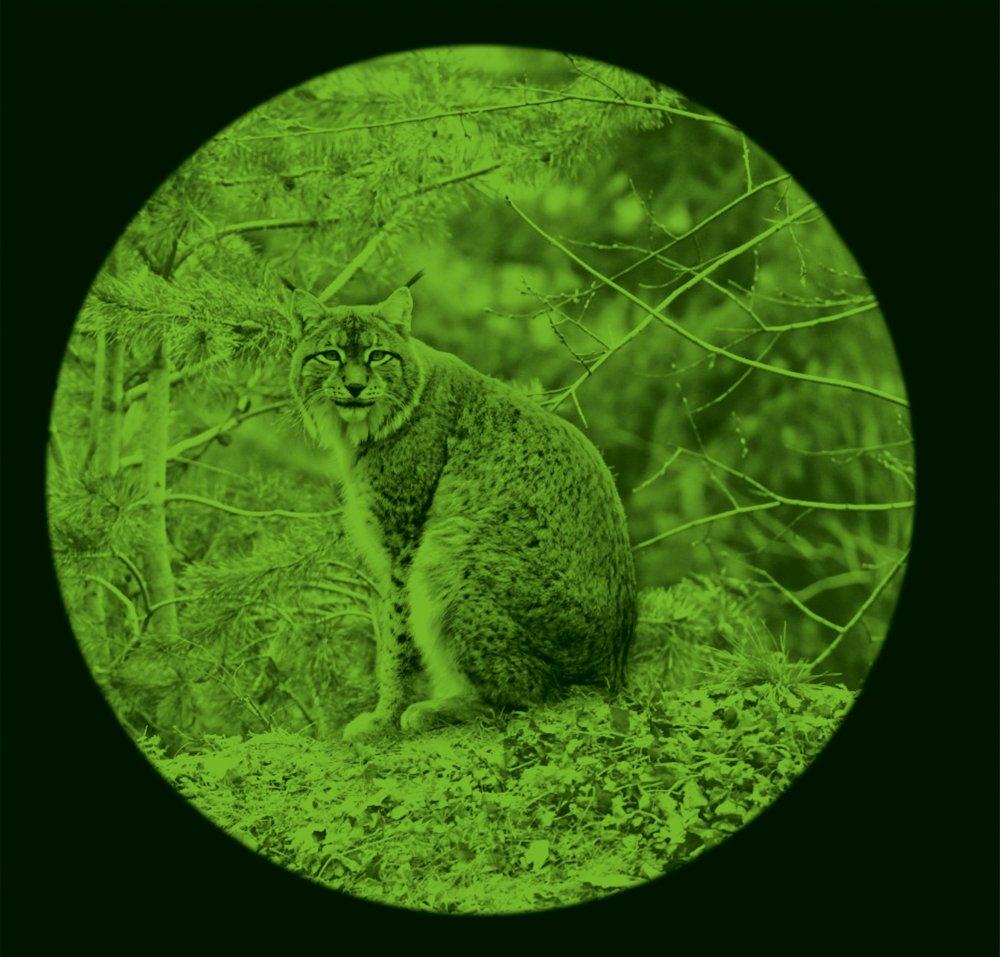 como funciona un binocular de visión nocturna